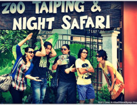 Taiping with Love