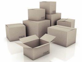 Kotak oh kotak!