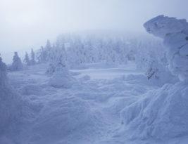 Snow Monsters @Yamagata