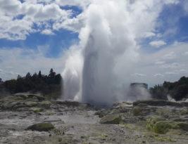 Pohutu Geyser @Te Puia, Rotorua
