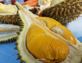 Durian Hunting @Putra Perdana