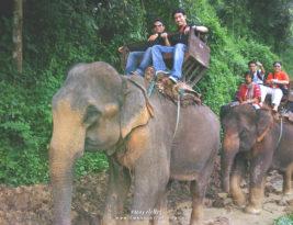Trip to Chiangmai, Thailand